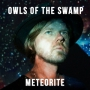 Owls of the Swamp - Meteorite
