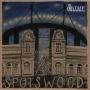 The Orbweavers - Spotswood