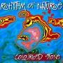 Coloured Stone - Rhythm of Nature