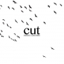Cut - Chainsaws / I Cannot Follow (7 inch)