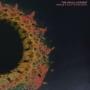 The Ovals - Acrobat