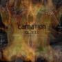 Carnation - 12-21-12