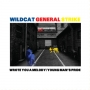 Wildcat General Strike - Wrote You A Melody